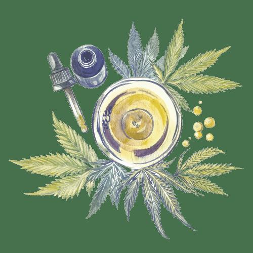 achat de cbd légal cannabis en france